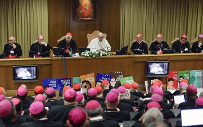 Bishops Vote for Married Priests for the Amazon